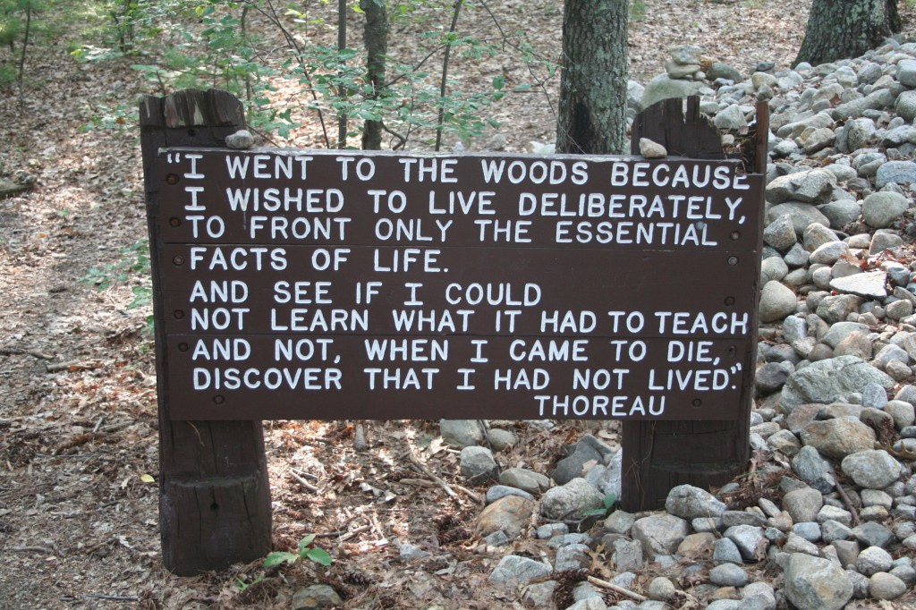 the american transcendentalism movement history essay His essay supports the american transcendental movement's philosophical pillar: that the individual is identical with the world, and that world exists in unity with god through this logic, it follows that the individual soul is one with god, thusly eliminating the need for an outside institution (vanspanckeren net.