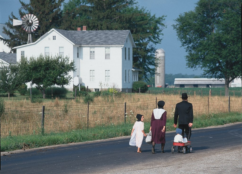 english amish and deeper understanding Deeper understanding of power the 1985 film ' witness ' directed by peter weir is a crime/drama that develops the theme of conflict though individual power on a social, cultural and personal level.