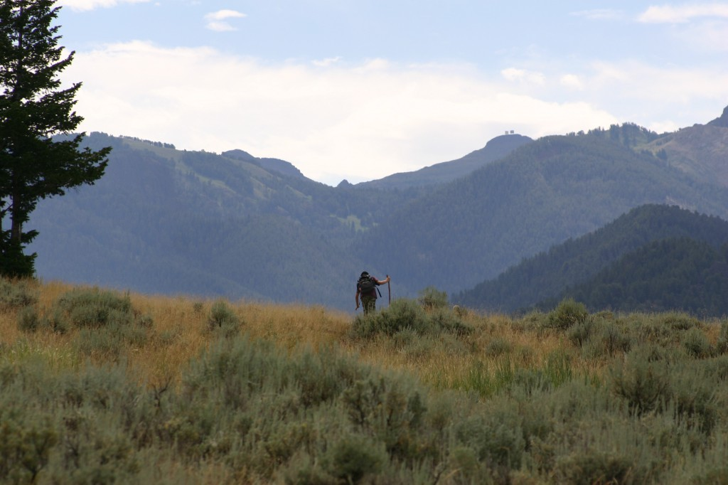 The photo that appears at the top of this website is of my son, Carl, hiking in Wyoming (Lori Erickson photo)